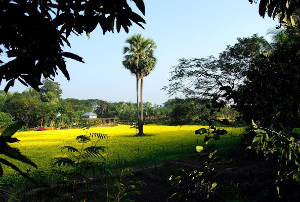 Harirampur Upazila Health Complex