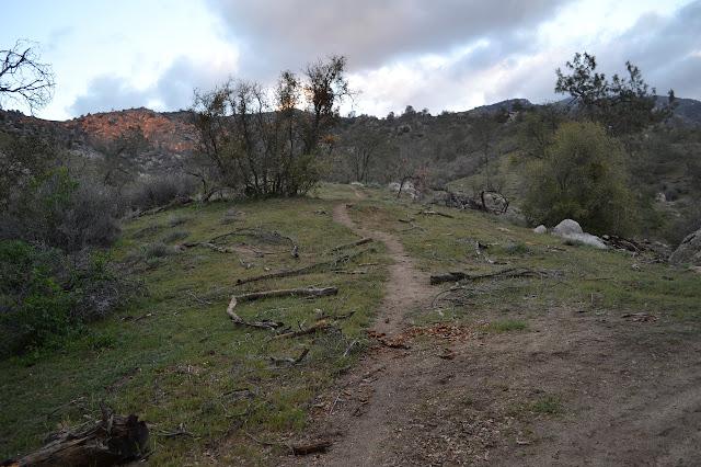 a path climbing the hills