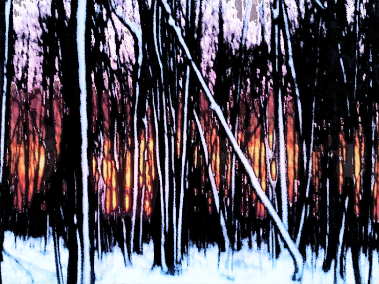 IMAGE(https://lh5.googleusercontent.com/-BGiiUn2cNC8/T0qUu3asC8I/AAAAAAAAFIA/NHO2amzjab4/s740/cheryl-woods-web-muted-flame.jpg)
