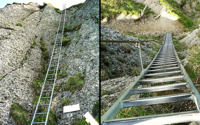 Leiter zum Steineberggipfel Allgäu Nagelfluh