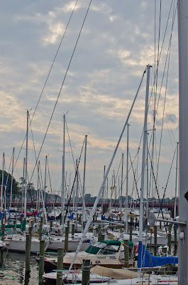 boats, masts, harbor, marina, Eastport, Annapolis, clouds