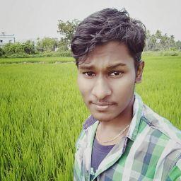 Hari haran review