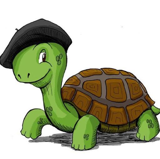 Turtlegames30200