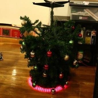 Christmas Tree Photo 12