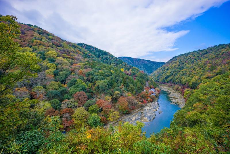 京都 嵐山公園 紅葉 写真1