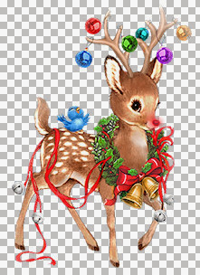 Suz~PP Rudolph.jpg