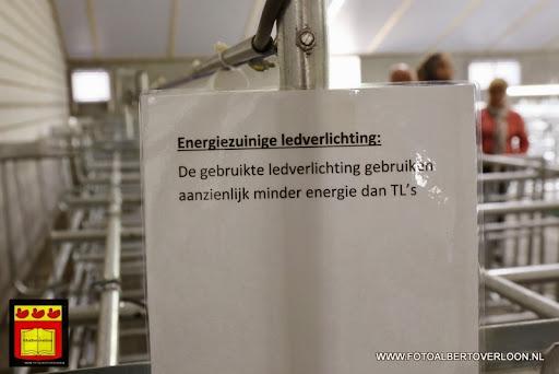 Open dag varkensbedrijf molenpas overloon 29-06-2013 (17).JPG
