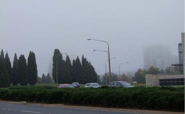 fog on vernon circle