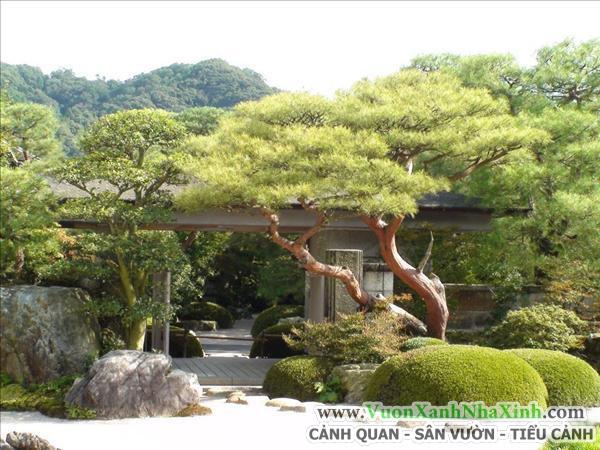 Vườn Tiểu Cảnh Nhật Bản _ www.VuonXanhNhaXinh.com