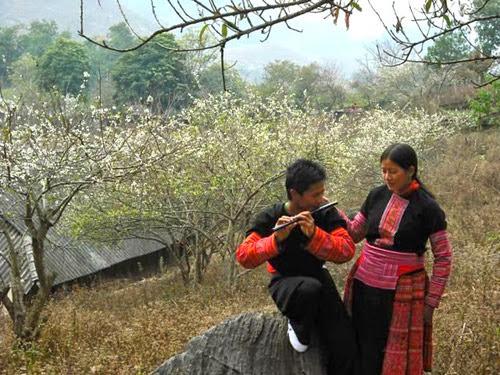 Hinh 8+%25281%2529 Lên Mộc Châu ăn Tết với người Mông