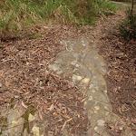 Rock markings on Graves Walk (227137)