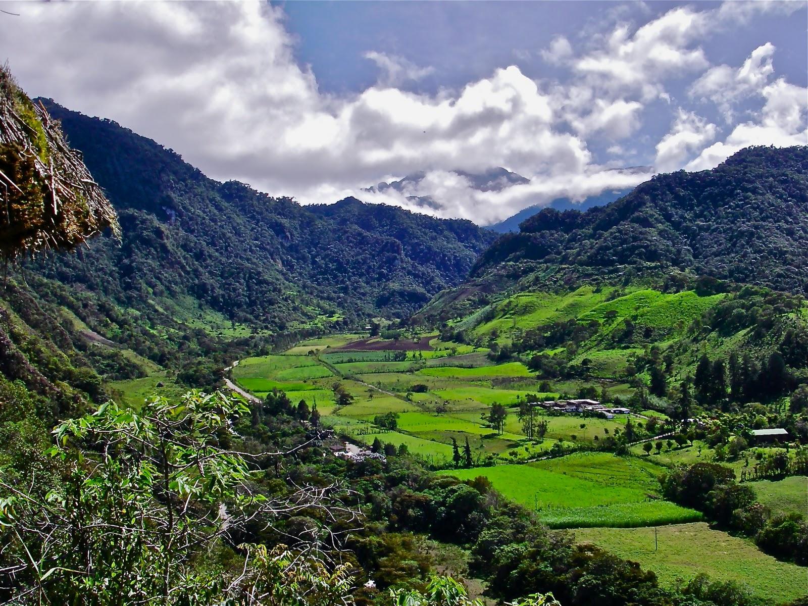 Ecuador Cloud Forest Tours