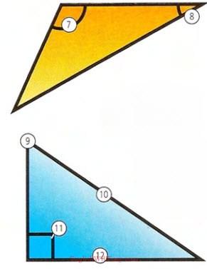 Shapes- Photo Dictionary