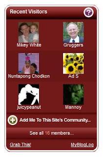 MyBlogLog widget