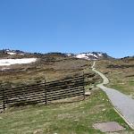Mt Kosciuszko path (84175)