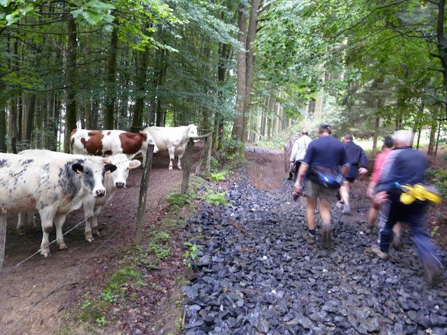 MESA, Ardennes belges, 1-4 x 30km, 26-29 juin 2012 Bastogne%25202008-06-28%2520%2528136%2529