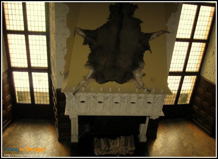 zamek czocha - sala kominkowa