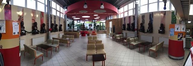 Zsigmond király Főiskola