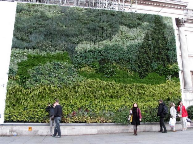 Jardín vertical de paneles de sustrato.