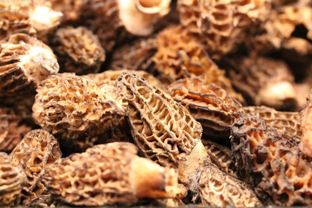 morel mushrooms, in a basket at Whole Foods