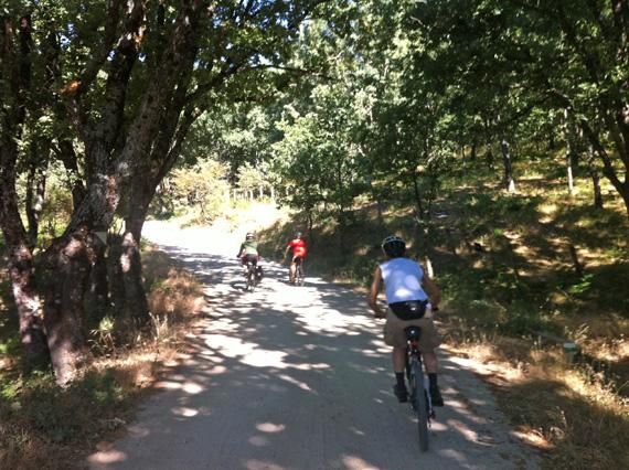 Ruta en bici por la Hoya de San Blas, julio 2012
