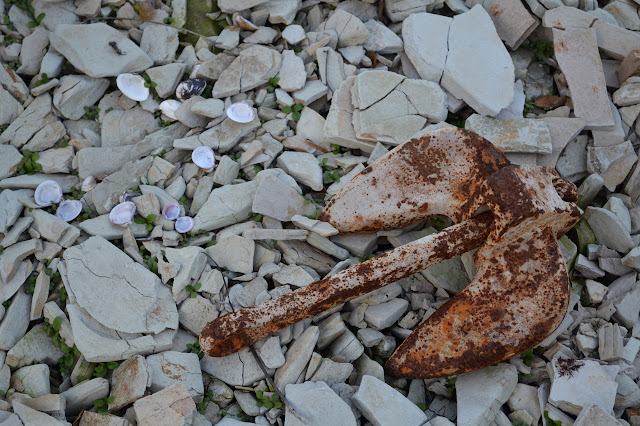 rusted anchor on the bottom of the lake