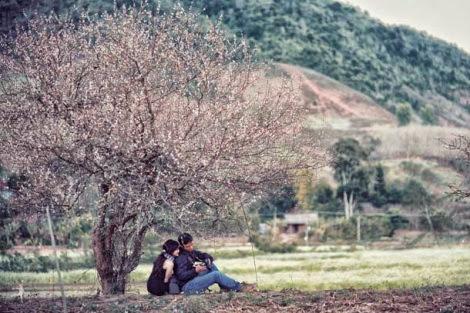 moc chau pys travel001 001 Mộc Châu mùa xuân   Thiên đường mận trắng