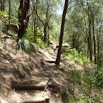 Steps and track behind Wondabyne Station (382646)