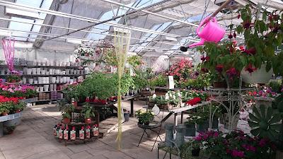 Brunnsvikens Trädgård 927