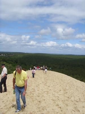 砂丘のてっぺん