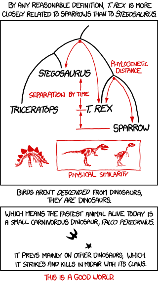 Birds and Dinosaurs