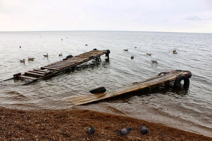 Listvyanka Lake Baikal ducks pigeons cold