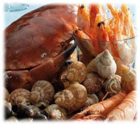 fruits-de-mer-et-crustaces-bebe-peut-il-en-manger