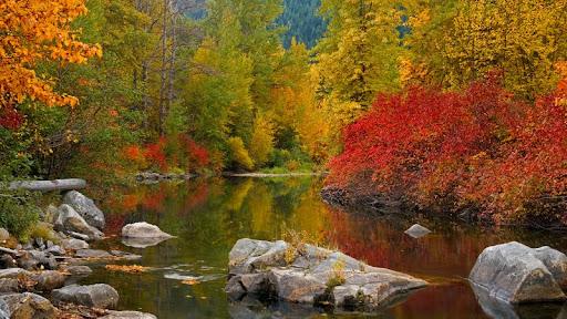 Nason Creek, Stevens Pass, Washington.jpg
