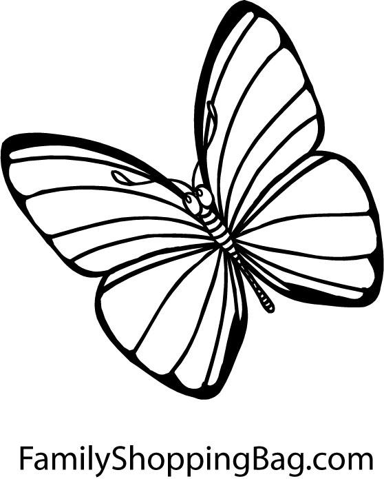 dessin de papillon colorier gratuit