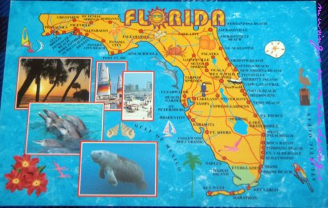 postcards, map cards, Florida, 50 US States Map Cards