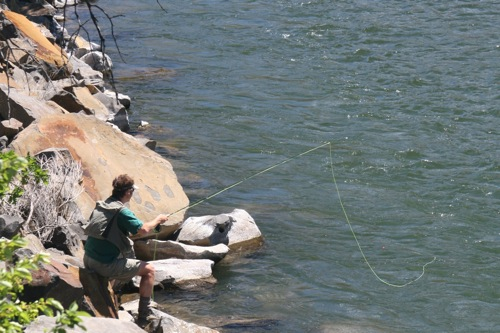 Oregon fly fishing report by larimer outfitters how to for Fishing report oregon