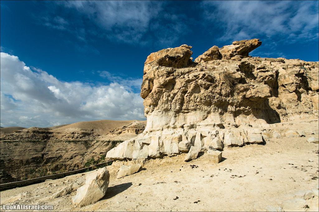 И вновь об Иудейской пустыне (foto il  фото путешествия пустыня иудея и самария  20121208 judea desert 001 5D3 4090)