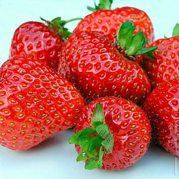 Everest Strawberry (Эверест клубника)