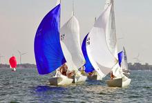J/22 one-design sailboats- sailing in Canada's CORK Regatta