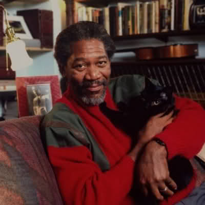 Morgan Freeman cuddling a cat