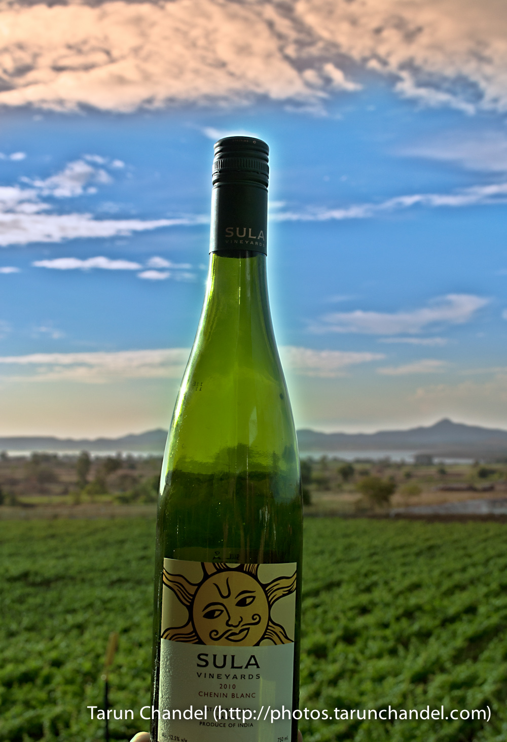 Chenin Blanc Down with the Sun Sula Wines Nashik, Tarun Chandel Photoblog