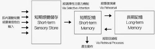 %252522memory-model.jpg%252522.jpg