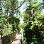 Bridge between Larkin Ln and Shirley Rd (386624)