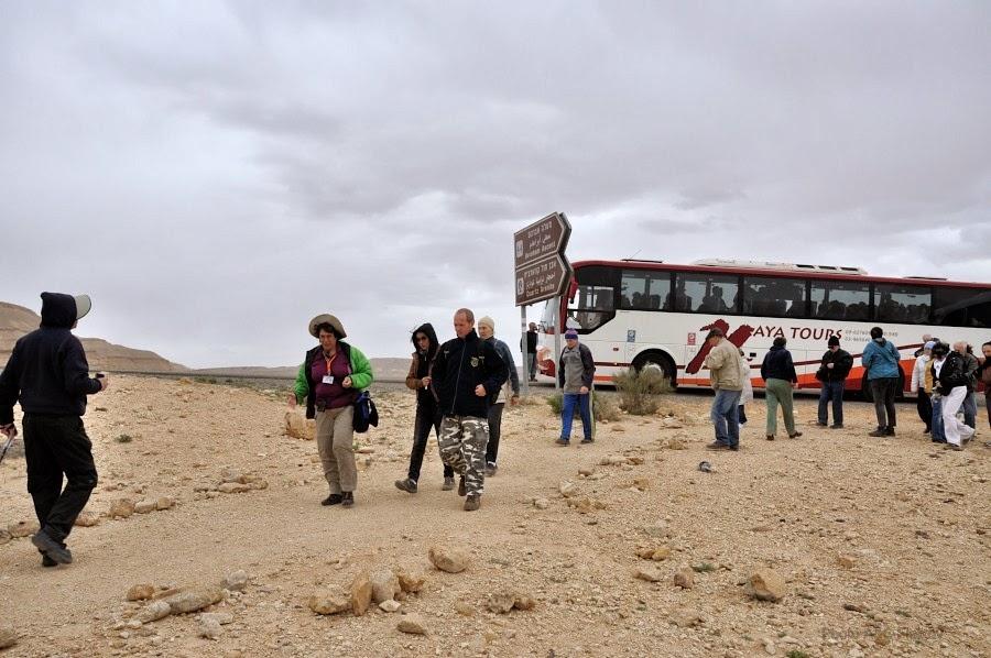 Мы приехали к окаменелым деревьям. Экскурсия гида Светланы Фиалковой в пустыню Негев.