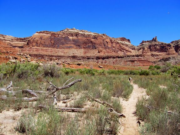 Trail from the airstrip to Spring Canyon