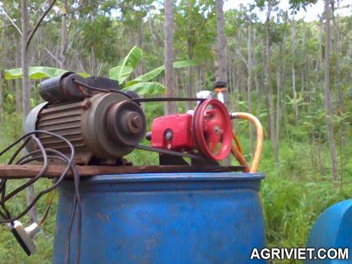 Agriviet.Com-Photo0446.jpg