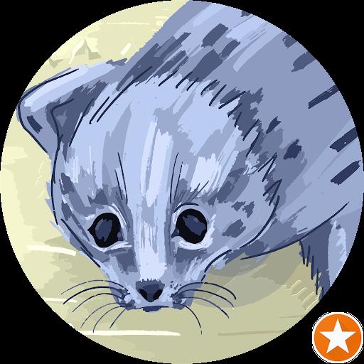 m. ship