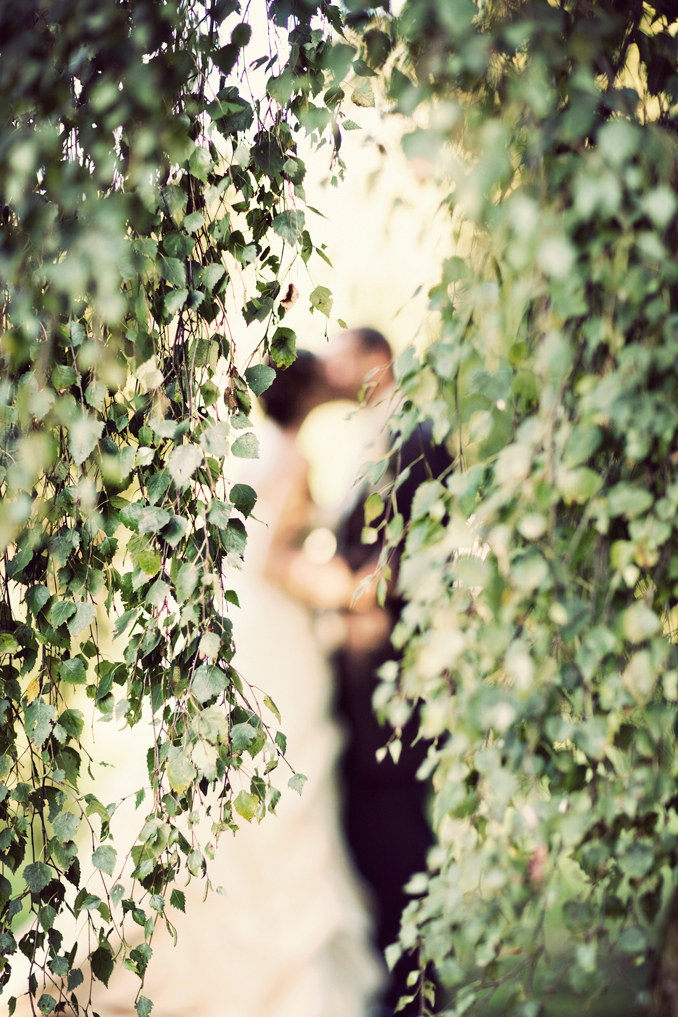bride and groom kissing STUDIO 1208