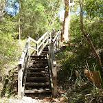 Riverside Corporate Park Scenic Trail steps (386042)